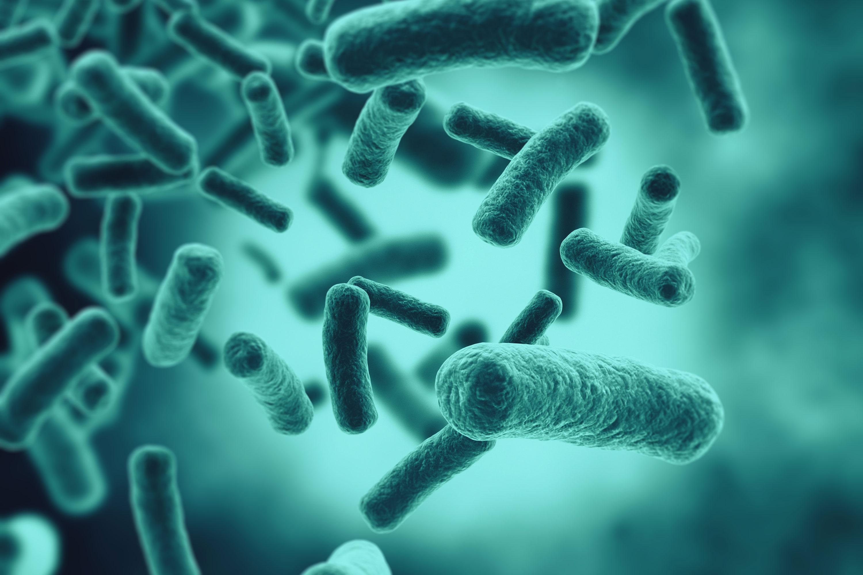 Quaternaire ammoniumverbindingen desinfectie
